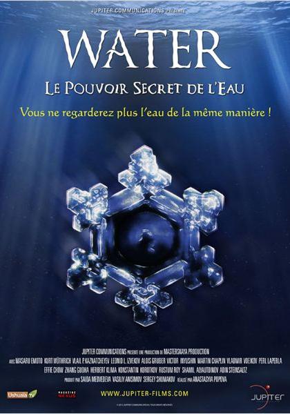 Water, le pouvoir secret de l'eau (2010)