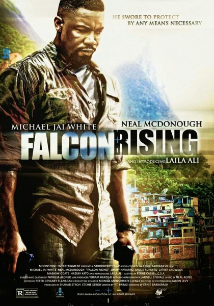 Falcon Rising (2014)