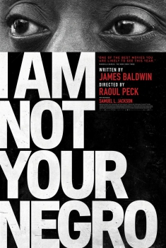 I Am Not Your Negro (2017)