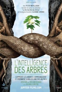 L'Intelligence des Arbres (2017)